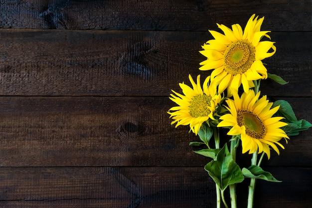 Girassóis amarelos brilhantes na placa de madeira rústica natural