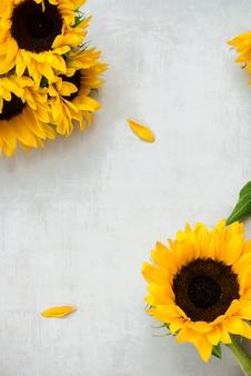 Girassol amarelo sobre fundo cinza, conceito de outono