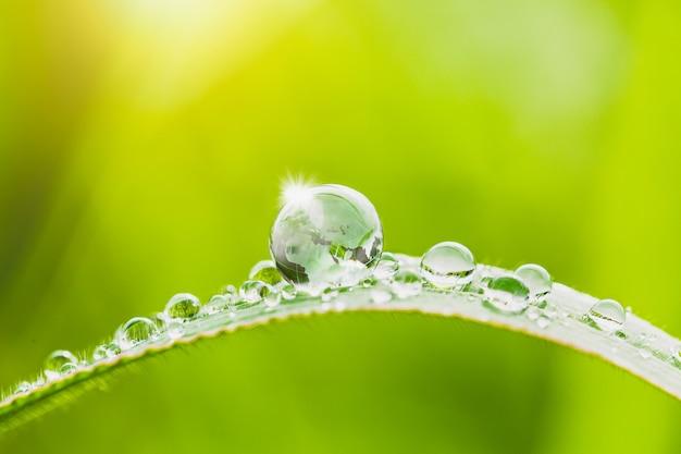 Globo e gotas de água na grama com fundo verde desfocado