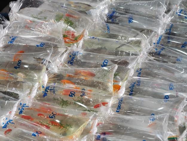 Goldfish são embalados em sacos de plástico vendidos no mercado de animais de estimação