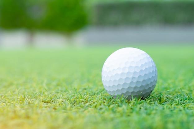 Golfe na grama verde
