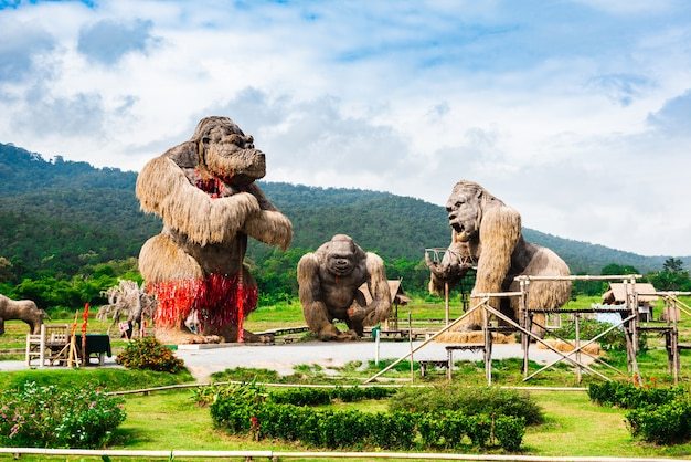 Gorilas gigantes no campo de arroz