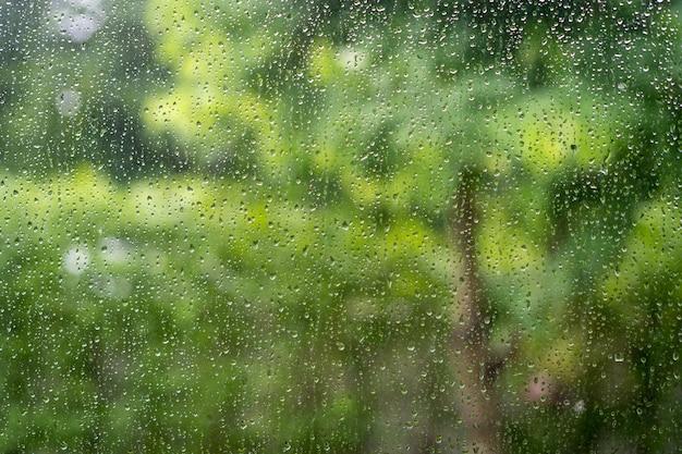 Gota de chuva no vidro com cena turva árvore verde.