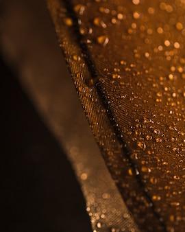 Gotas de água na superfície da pena marrom contra o cenário turva