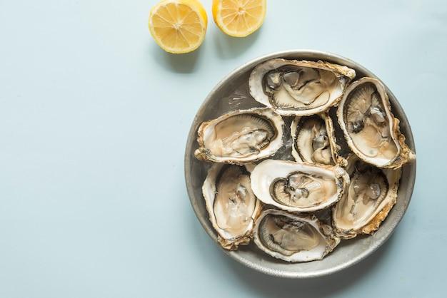 Gourmet fresco de ostras