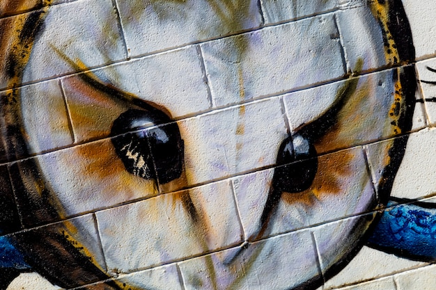 Graffiti de coruja na parede