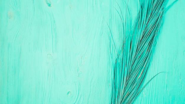 Grama azul pintada