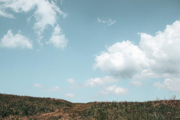 Grama de campo verde vila com flores e céu azul com grandes nuvens. panorama de paisagem rural