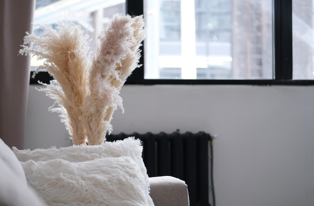 Grama de pampa decorativa, juncos em um vaso na frente da grande janela e perto do sofá. foto