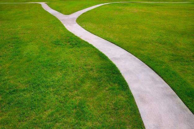 Grama do gramado do jardim com um desvio de duas maneiras da opção