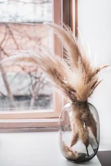 Grama dos pampas em um vaso de vidro perto da janela, camada de junco, sementes de junco.
