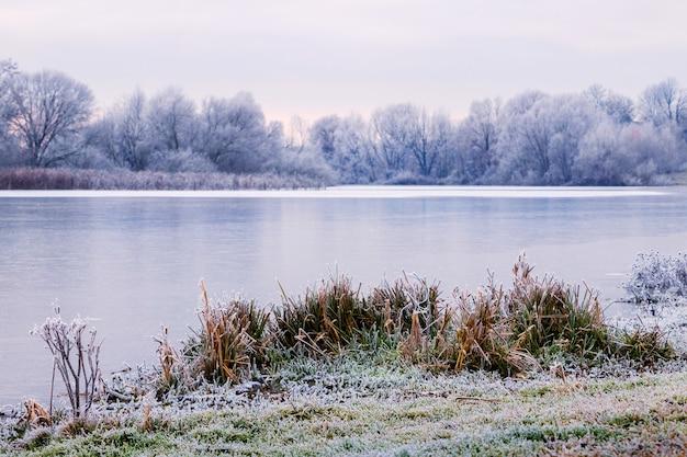 Grama e árvores cobertas de geada nas margens do rio, paisagem de inverno com rio e árvores cobertas de neve