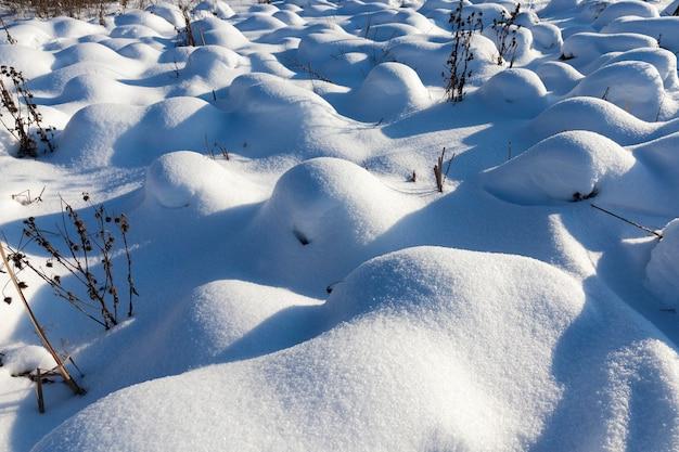 Grama em grandes montes após nevascas e nevascas, a temporada de inverno com clima frio e muita precipitação na forma de neve cobrem a grama e plantas secas Foto Premium