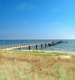 Grama protetora segurando praias de areia do mar báltico