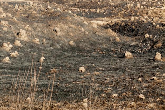 Grama queimada na primavera, incêndio em close e grama seca queimada