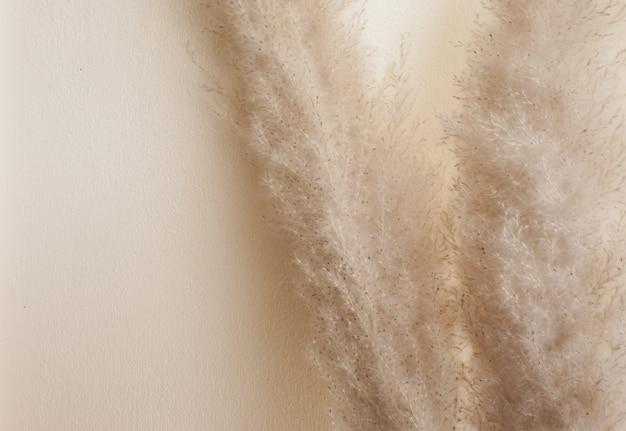 Grama seca junco haste de plumagem haste de penas decorativas arranjo de flores para casa