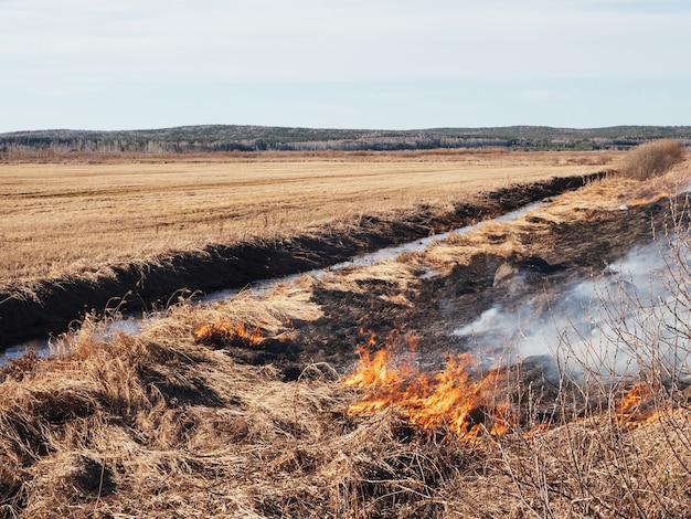 Grama seca queima no campo em clima quente. incêndios florestais perigosos, desastre. fosso com água, prevenção de incêndios, equipamento de segurança contra incêndios.