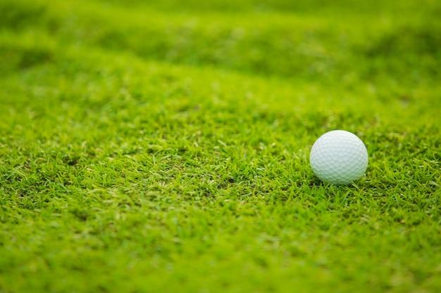 Grama verde, com, bola golfe