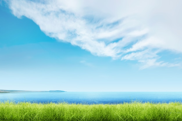 Grama verde com vista para o mar azul e cloudscapes