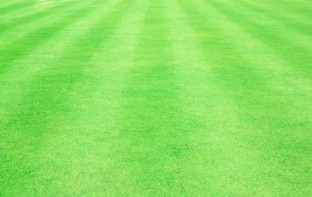 Grama verde de campo de futebol