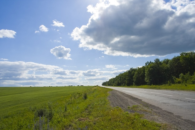 Grama verde, estrada e céu azul
