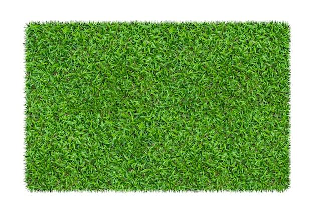 Grama verde. fundo de textura natural. grama verde fresca primavera. isolado no fundo branco
