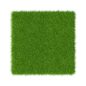 Grama verde. fundo de textura natural. grama verde primavera fresca. fechar-se.