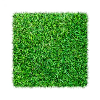 Grama verde. fundo de textura natural. grama verde primavera fresca