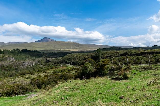 Grama verde nas montanhas e colinas