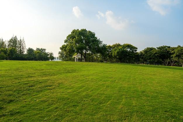 Gramado no parque verde