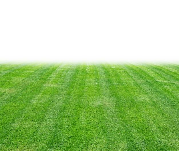 Gramado verde para o fundo, textura da grama verde.