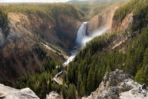 Grand canyon do parque nacional de yellowstone