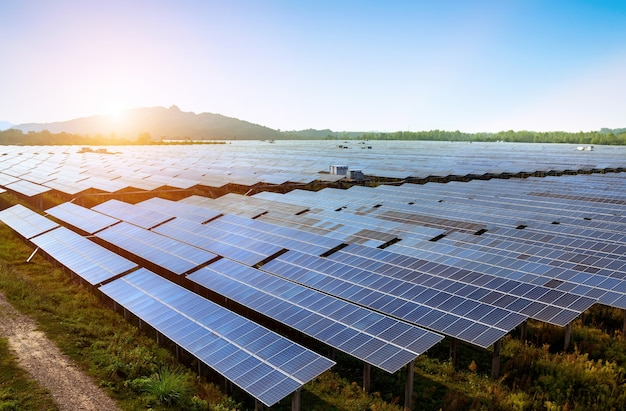 Grande área de painéis solares