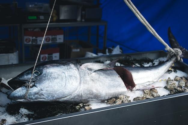 Grande atum no mercado de alimentos