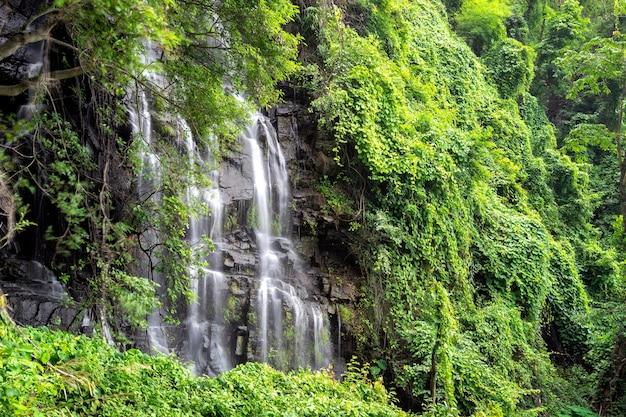 Grande cachoeira bonita que flui entre rochas em uma floresta verde-clara.