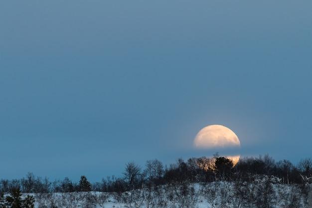 Grande lua nascendo atrás de uma montanha com algumas bétulas na paisagem de inverno com neve, em setesdal, noruega
