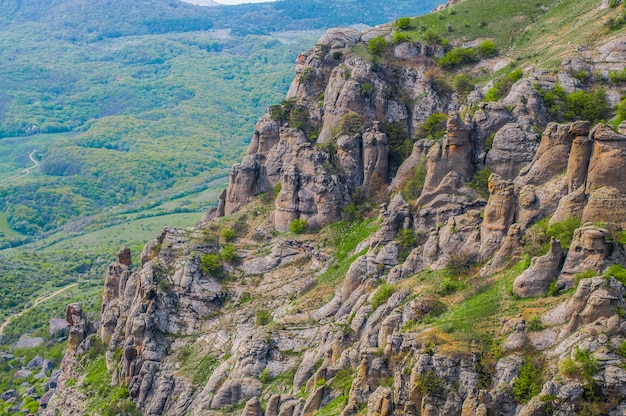 Grande pedra em primeiro plano coberta de musgo