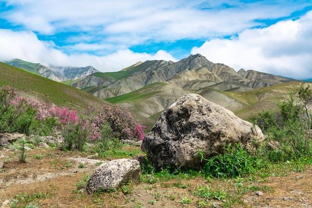 Grande pedra em um vale de montanha