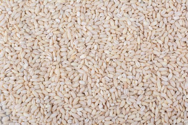 Grande pilha de arroz de grão curto cru