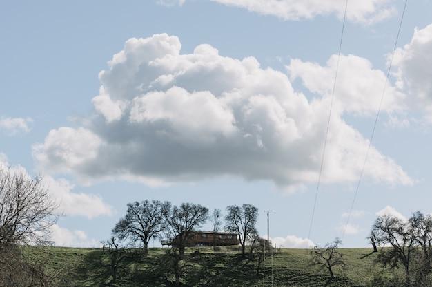 Grande plano de árvores em um campo de grama verde perto de uma cabana de madeira sob um céu claro com nuvens brancas