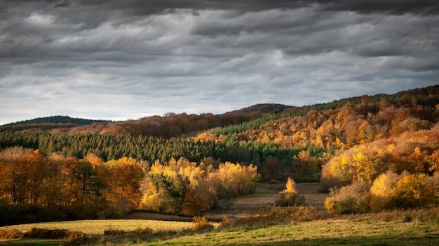 Grande plano de colinas arborizadas com um céu nublado em segundo plano durante o dia
