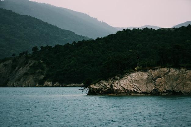 Grande plano de um penhasco coberto de árvores verdes à beira-mar