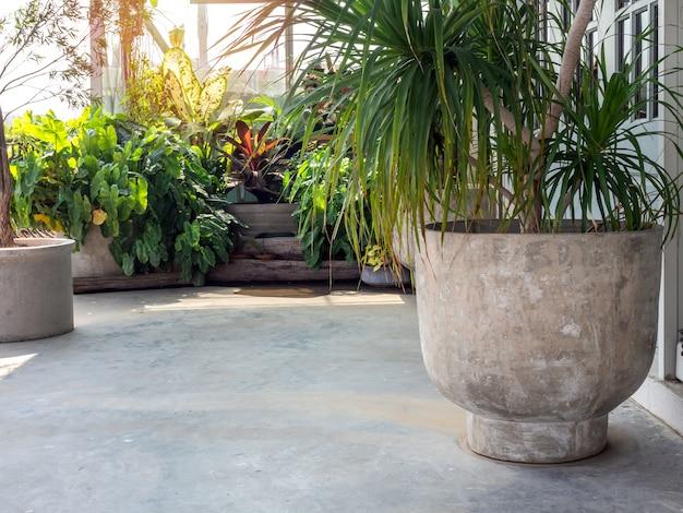 Grande pote de concreto redondo com folhas verdes no chão de cimento perto do jardim tropical verde.