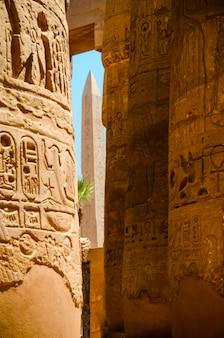 Grande salão hipostilo nos templos de luxor (antiga tebas). colunas do templo de luxor em luxor, egito