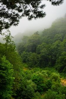 Grandes montanhas do cáucaso