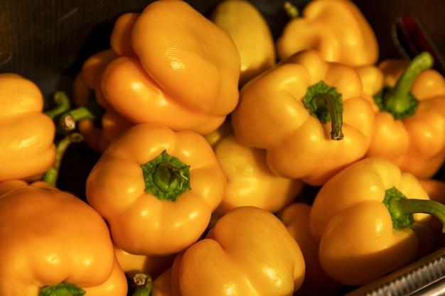 Grandes pimentões amarelos na loja. vitaminas e saúde da natureza. fechar-se. foco seletivo.