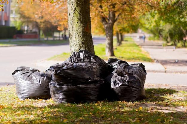 Grandes sacos pretos com rede e folhas coletadas na cidade no outono