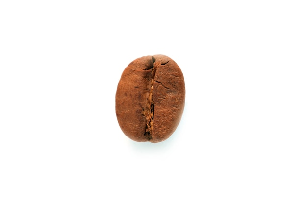 Grão de café isolado