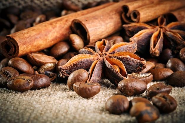 Grãos de café, café moído e canela na serapilheira.
