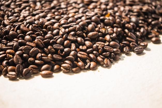 Grãos de café castanha e sementes